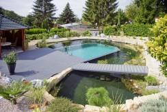 Naturpool - Das Schwimmbecken